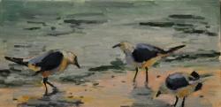 Shore Birds *SOLD*